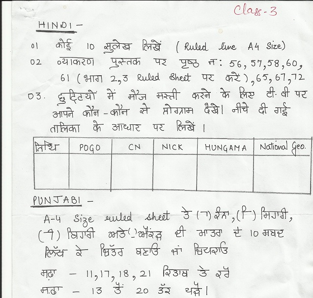 holidays homework of ryan international school ludhiana